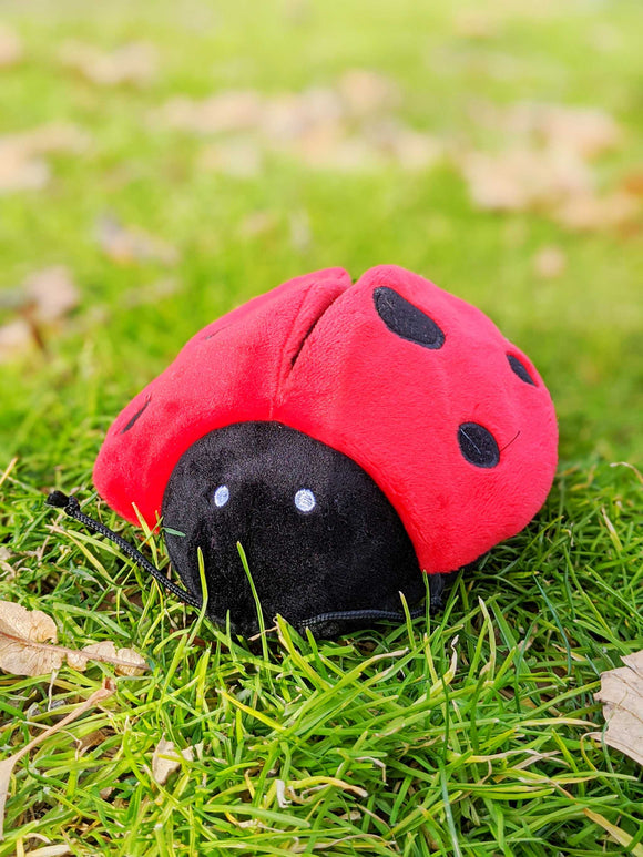 Cuddly LadyBug - The Cuddly Boutique