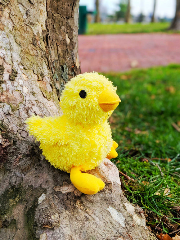 Cuddly Baby Chick - The Cuddly Boutique