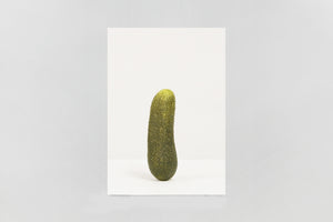 Erwin Wurm — SELF PORTRAIT AS 47 PICKLES (Special edition)