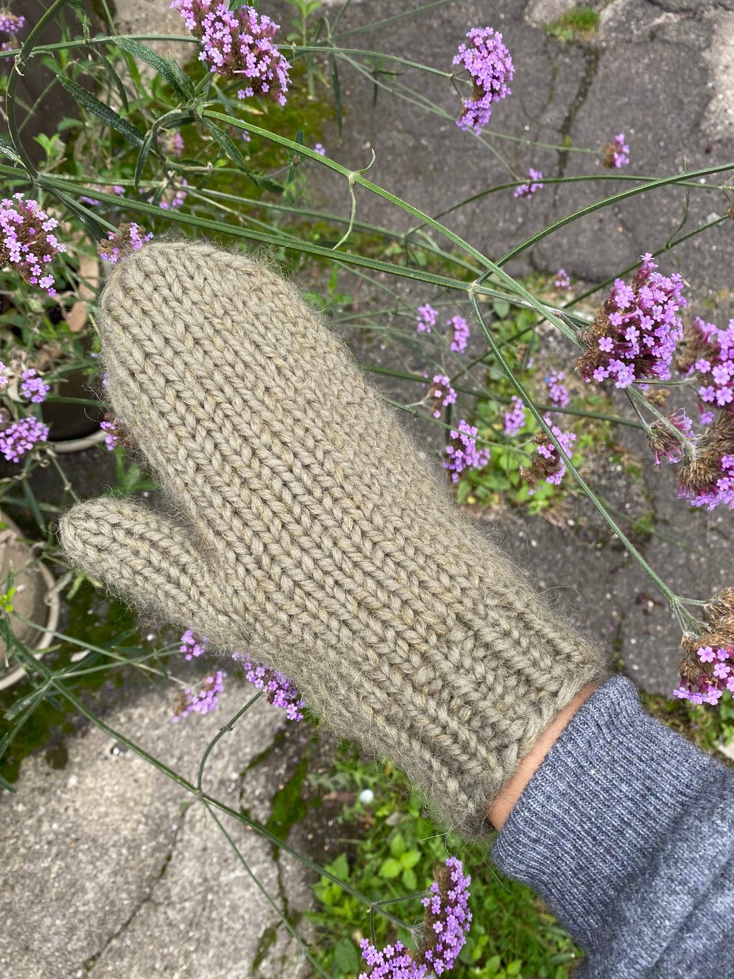 deima's winter mittens - knitting pattern (dansk)