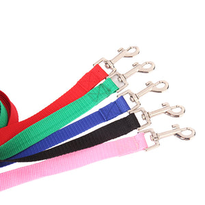 Dog Walking Leash Cutie Pets