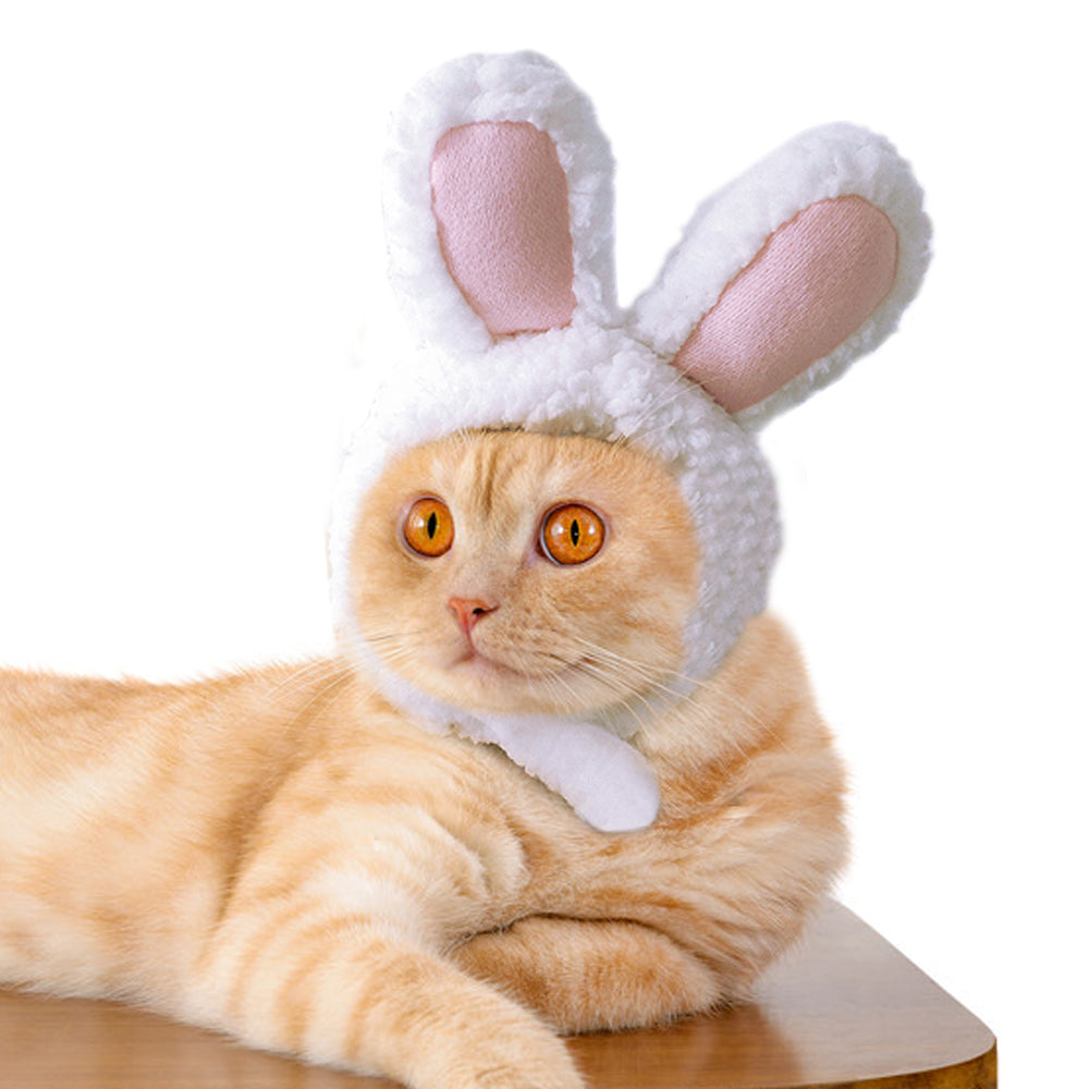 Rabbit Hat Cap Cute Cat Christmas Clothing Hats Cutie Pets