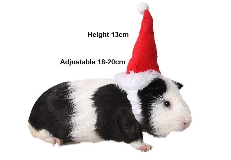 Christmas Small Animal Caps  Cutie Pets