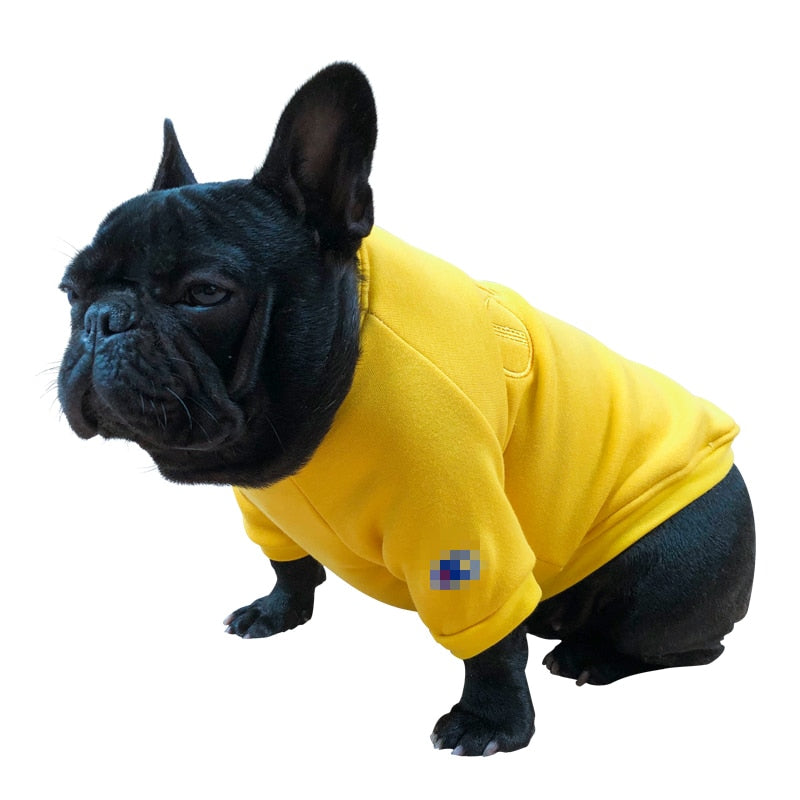Dog Sweater for Fat Dogs Cutie Pets