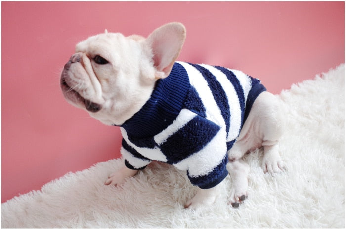 Turtleneck Dog Sweater Warm Suitable Cutie Pets