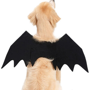 Halloween Pet Bat Wings Cat Bat Costume Funny Cats Cosplay Costume Fit Party Dogs Cats Playing Pet Products gorro ca