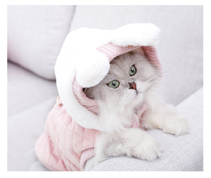 Warm Cat Dog Hoodies  Clothes Cutie Pets