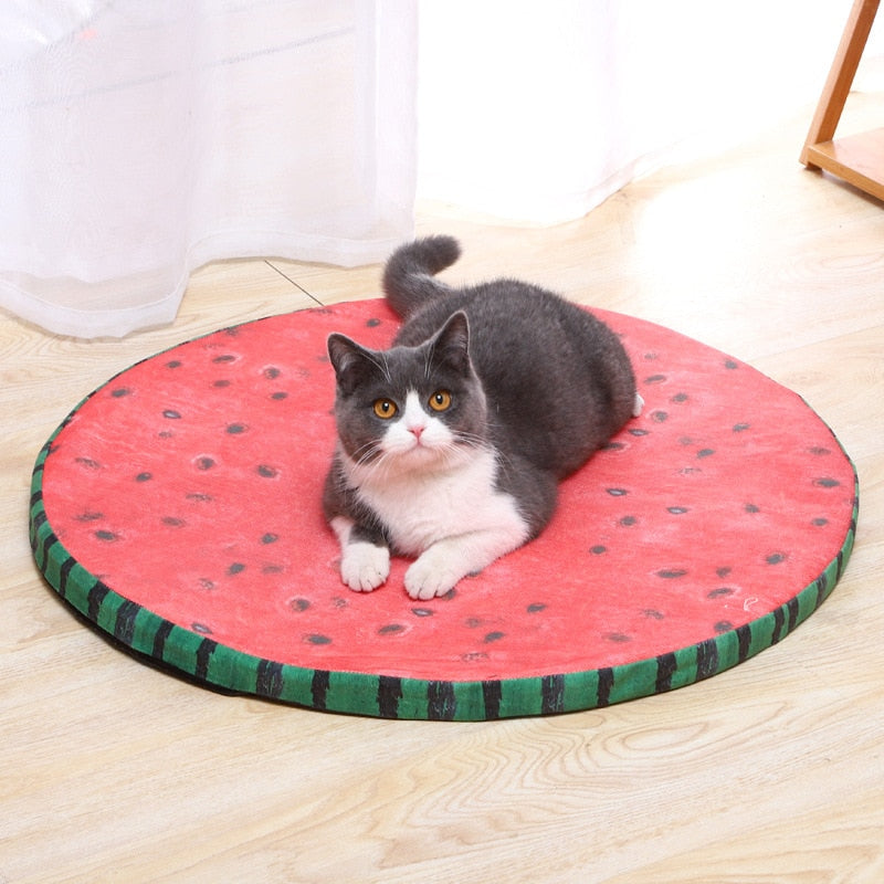 Summer Cooling Breathable Cat Bed Watermelon Cute Soft Sponge Sleeping Mat for Puppy Small Dogs Pet Accessories