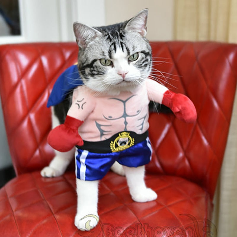 Funny Dog Cat Costumes Boxer Cosplay Suit Pet Clothing Cutie Pets