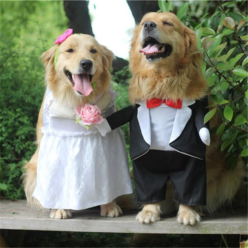Dog Costume For Wedding Party Big dog clothes Cutie Pets
