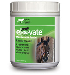Elevate Maintence Powder