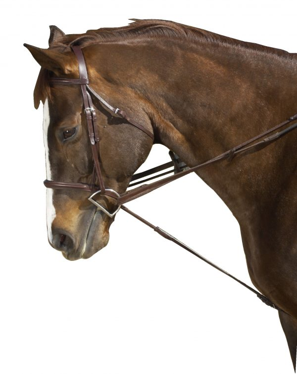 Ovation® Cord Draw Reins