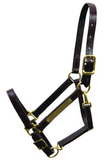 Walsh Classic Halter