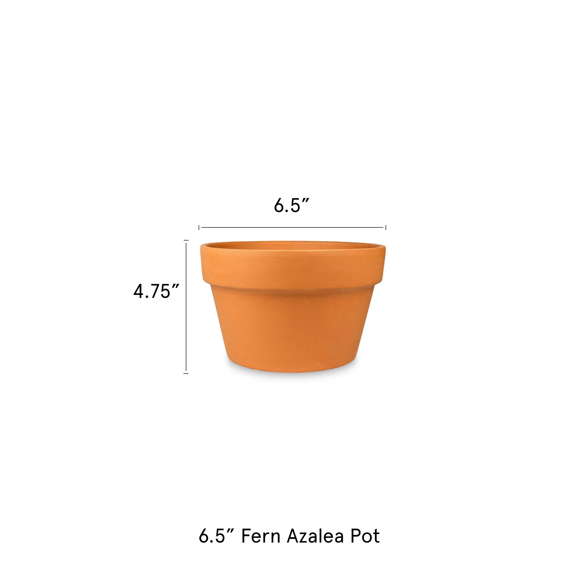 6.5-in-Fern-Azalea-Pot-Terra-Cotta