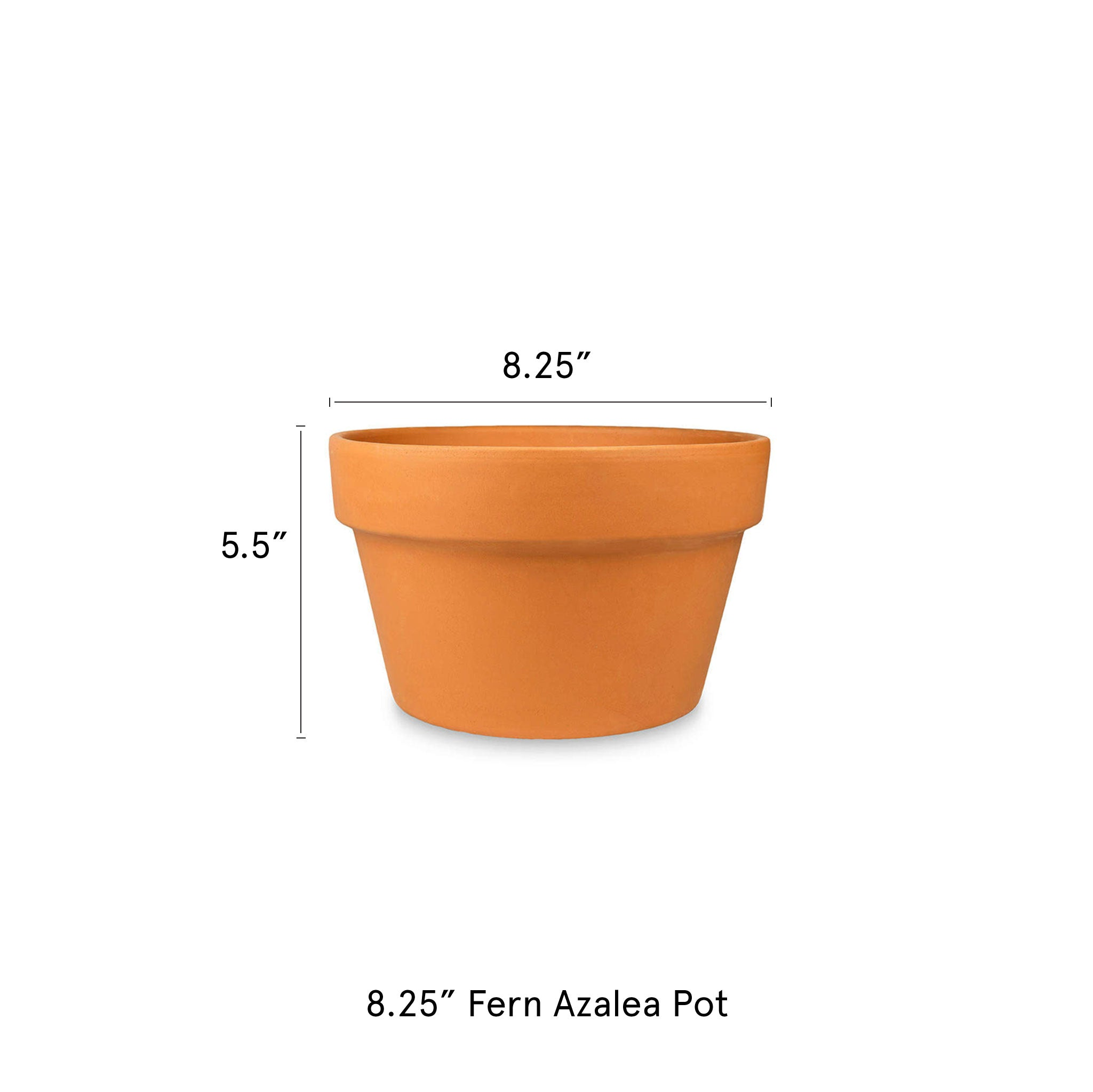 8.25-in-Fern-Azalea-Pot-Terra-Cotta