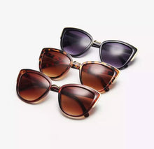 Load image into Gallery viewer, Miranda sunglasses (tortoiseshell)