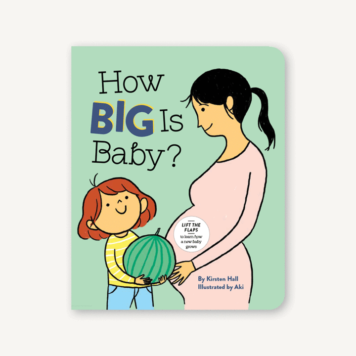 How Big is Baby? Flap Book