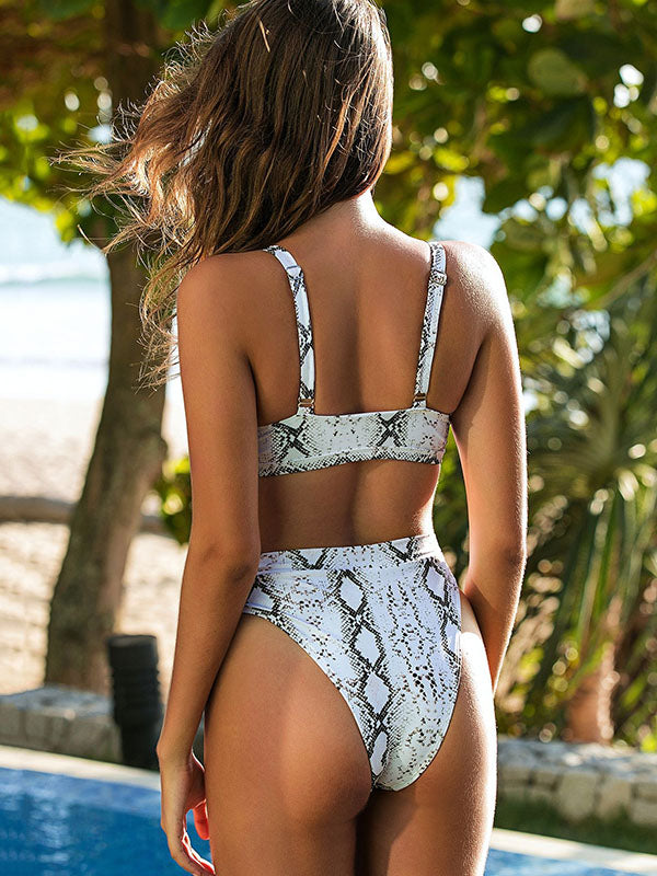 Snake-Print Embellished Hollow Split Bikini Swimsuit