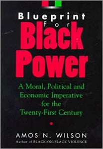Blueprint for Black Power: A Moral, Political, and Economic Imperative for the Twenty-First Century Paperback – 1 April 2000 by Amos N. Wilson  (Author)