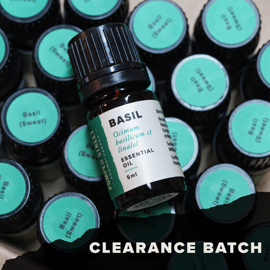 Basil, Sweet Essential Oil (Clearance Batch)