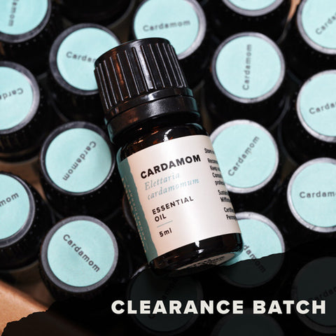 Cardamom Essential Oil (Clearance Batch)