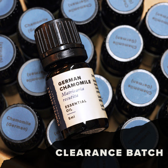Chamomile, German Essential Oil (Clearance Batch)