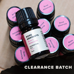 Rose Absolute (Clearance Batch)