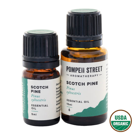 Pine (Scotch) Essential Oil