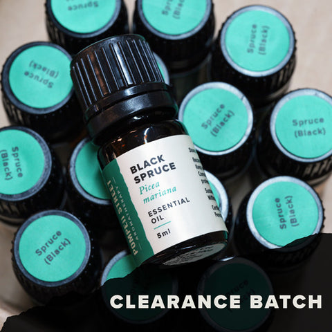 Spruce (Black) Essential Oil (Clearance Batch)