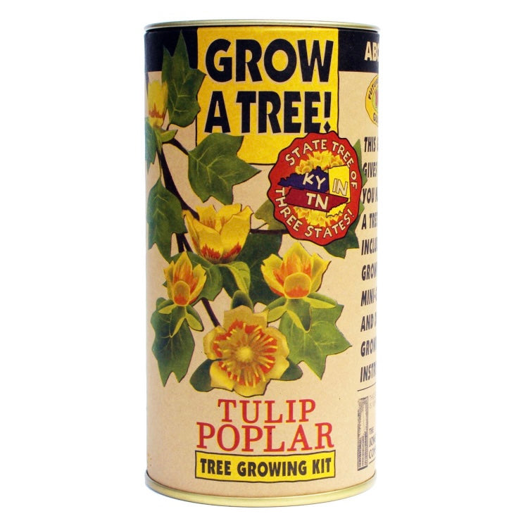Tree Growing Kit