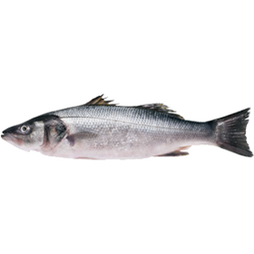 Local Organic Sea Bass - Sold in KG