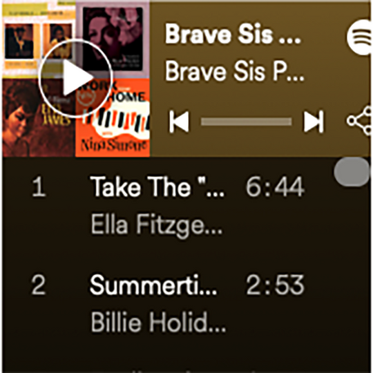 The Ultimate Brave Sis Music Adventure