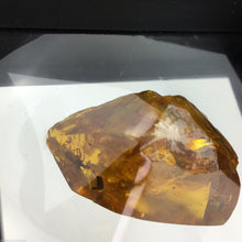 Load image into Gallery viewer, Genuine Baltic Amber stone with Inclusion in display frame