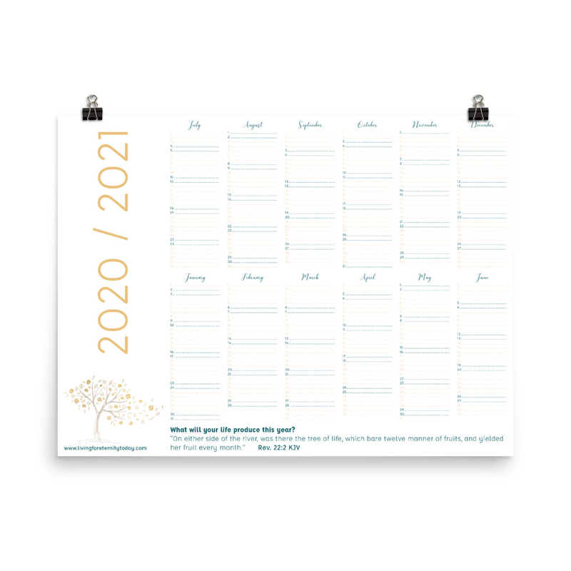 2020/2021 Beautiful Color Digital Annual Wall Calendar (18 x 24)