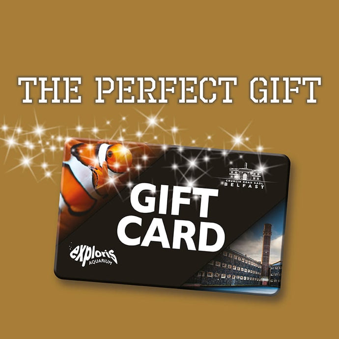 £95 Gift Card