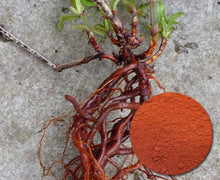 Load image into Gallery viewer, Madder Root Natural Dye Powder