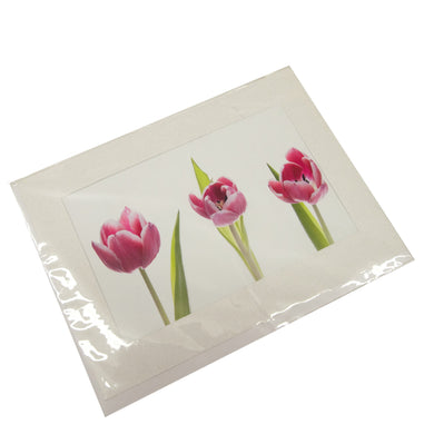 Three Tulips Flower Photograph Card