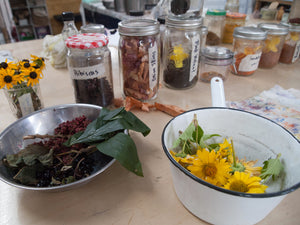 Dyeing with Nature Workshop