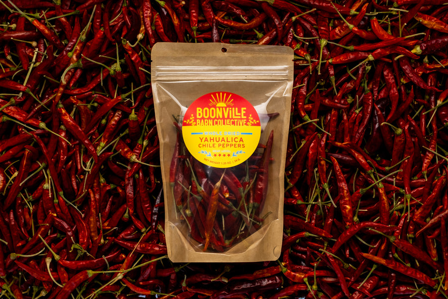 Whole Dried Yahualica Chiles