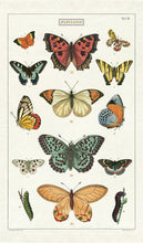 Load image into Gallery viewer, Butterfly - Tea Towel