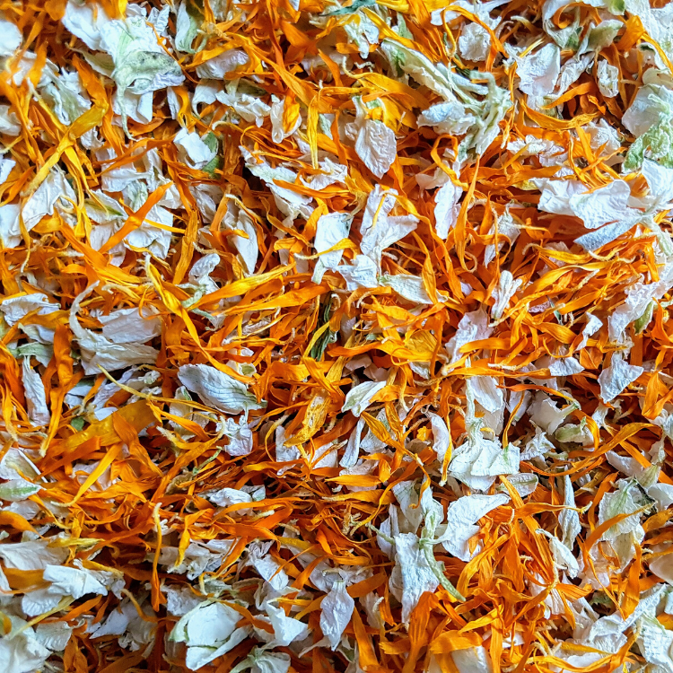 Orange & Ivory Petal Confetti