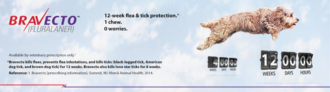 Bravecto Flea/Tick Chewable for Dogs (1 chew = 3 months protection)