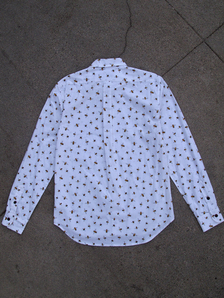 DUCHARME BUTTON DOWN