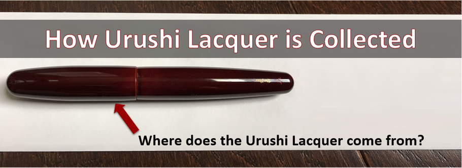 How Urushi Lacquer is Collected