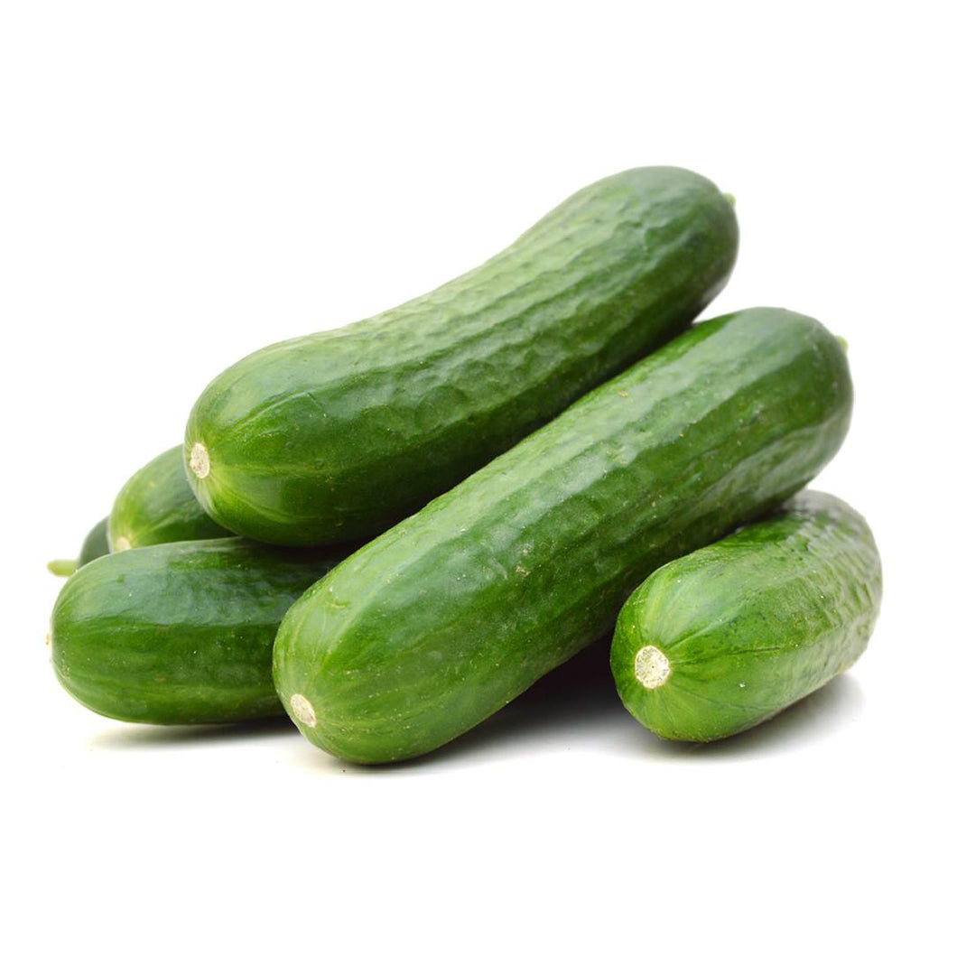 Cucumber Leb. (each)