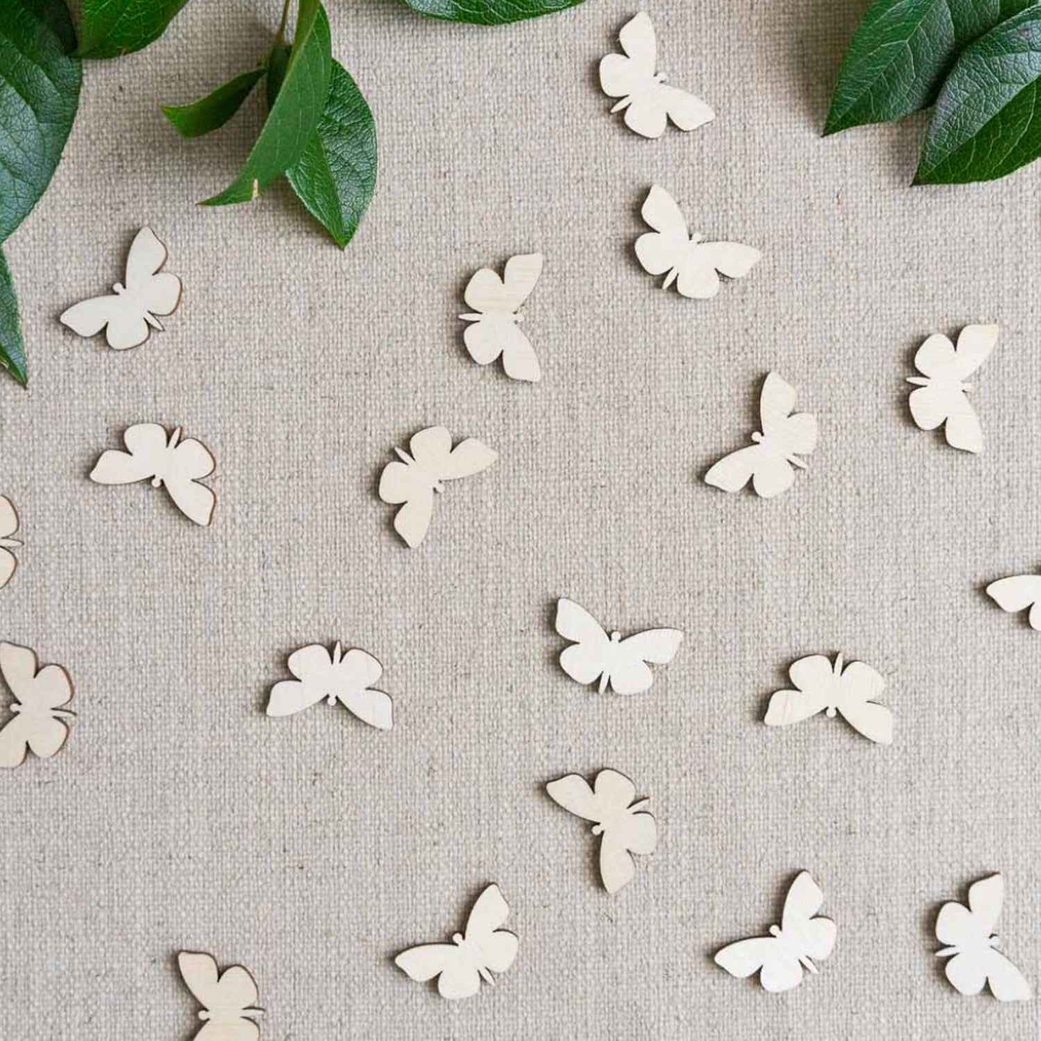 Table Confetti by Forest & Fauna