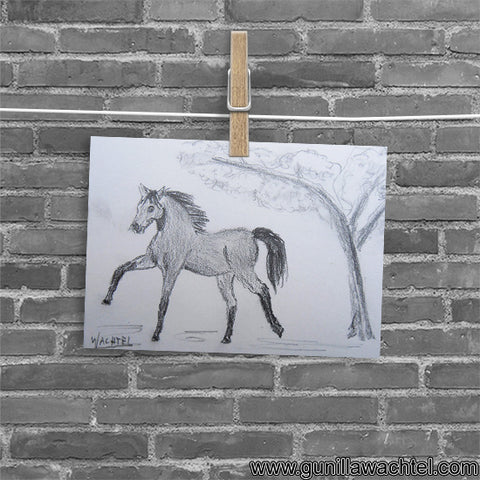 Arabian Horse and Japanese Blossom Tree - ACEO original drawing