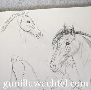 Pages from the sketchbook - horses