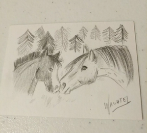 ACEO horse pencil drawing original eBay auction