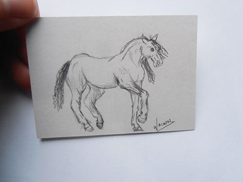 Horse ACEO Art Card - eBay Auction